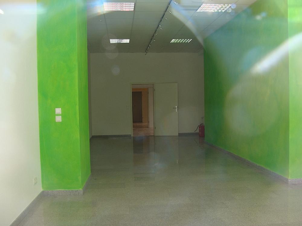 Neues Gruenes Buero Innen